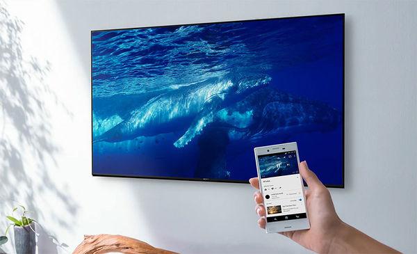 Sony KD-55XH9505 : HDMI x 4