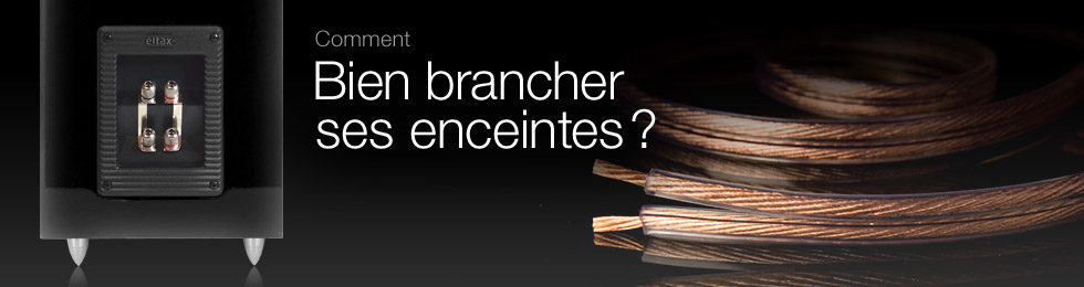 Menu de branchement