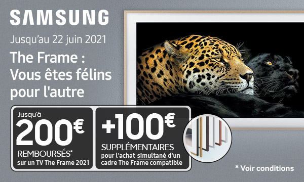 Sélection Samsung The Frame 2021